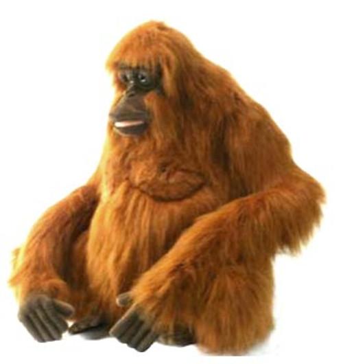 Orangutan Life Size