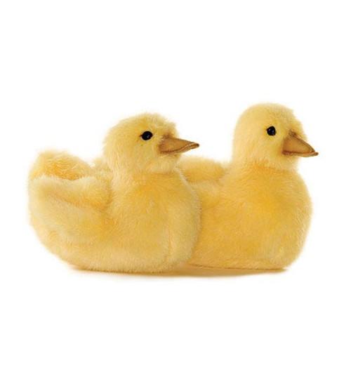 Swimming Chick