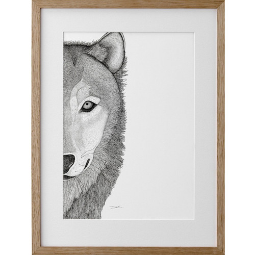 Willow the Wolf