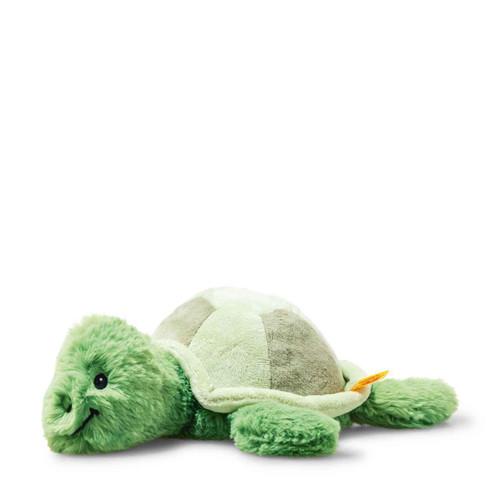 Tuggy Tortoise