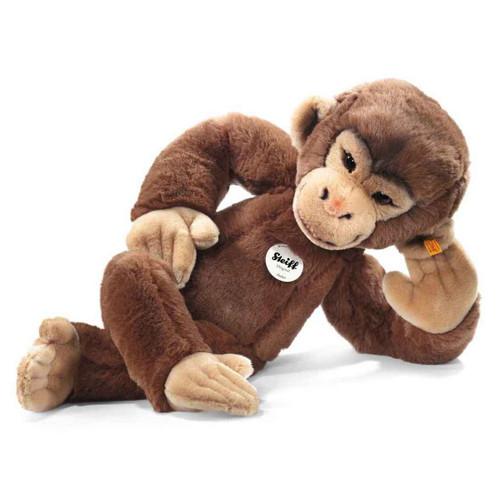 Jocko Chimpanzee