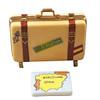 Barcelona Suitcase Rochard Limoges Box