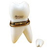 Limoges Imports Large White Baby Tooth W/Removable Tooth Limoges Box TB590-C