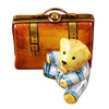 Limoges Imports Bear With School Bag Limoges Box