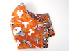 Face Mask - University of Texas Longhorns Pop Art