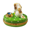 Spaniel Puppy With Ball And Bowl Of Water Rochard Limoges Box