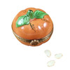 Pumpkin W/Seeds Rochard Limoges Box