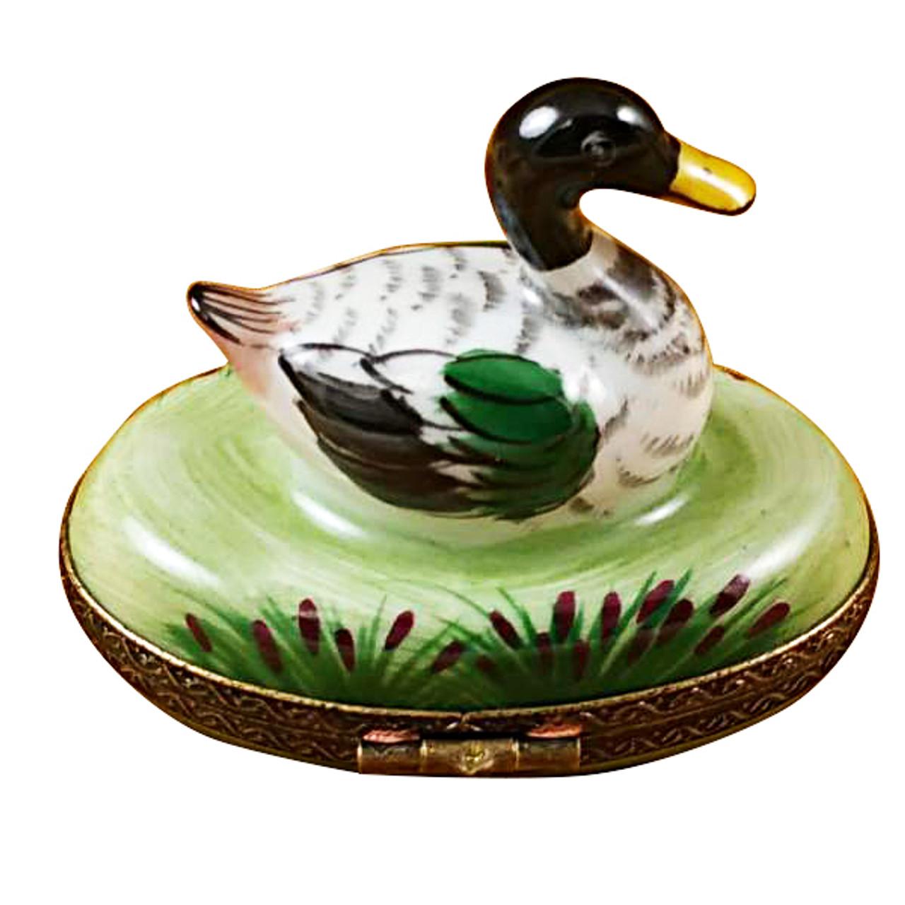 Limoges Imports Mallard Duck Limoges Box