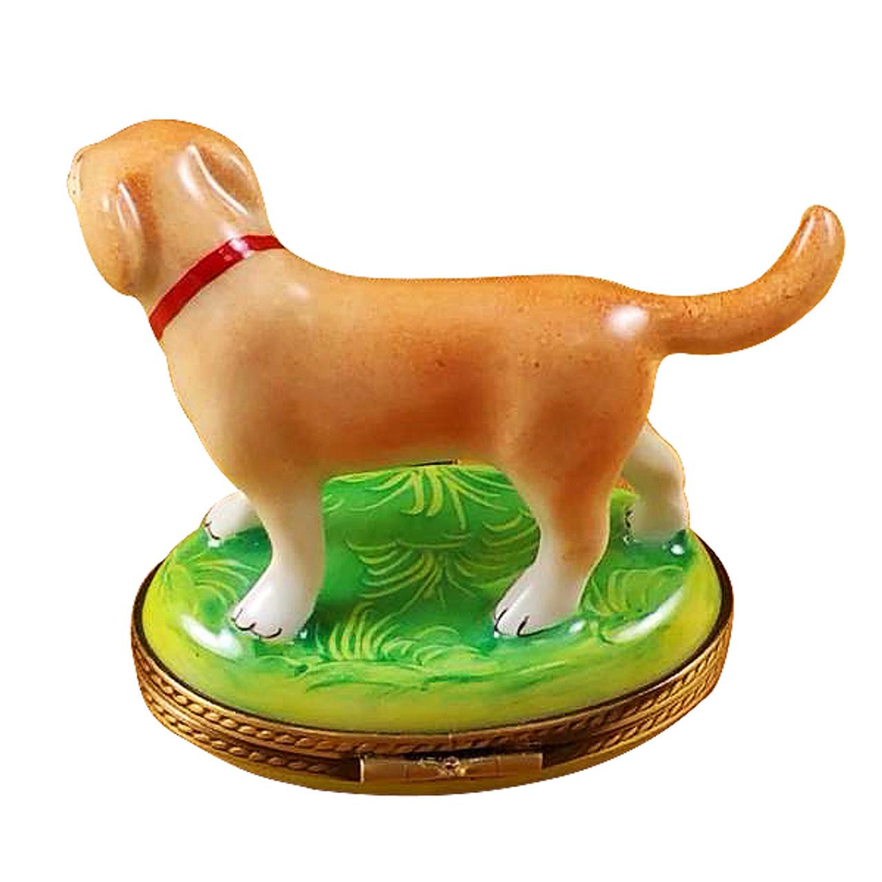 Standing Blond Labrador Rochard Limoges Box