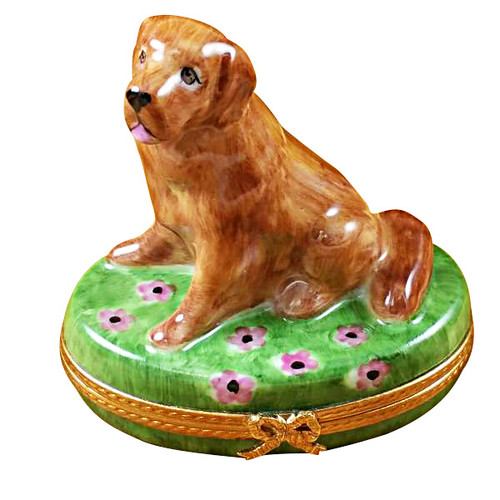 Limoges Imports Golden Retriever On Flowers Limoges Box