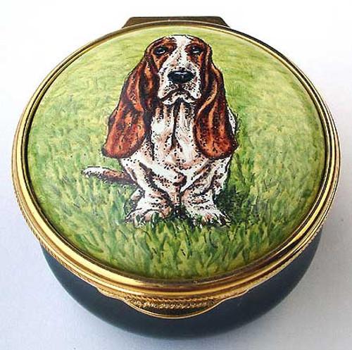 Staffordshire Basset Hound