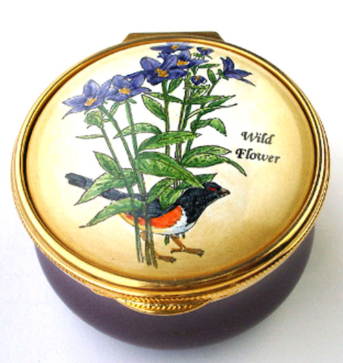 Staffordshire Wildflowers (05-264)