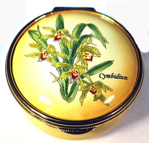 Staffordshire Cymbidium (05-269)