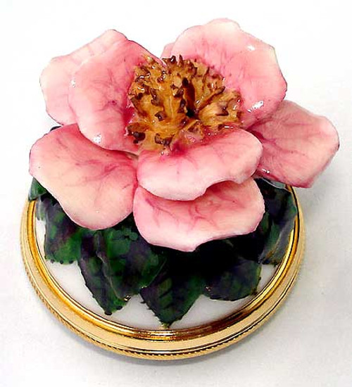 Staffordshire Wild Rose B/B