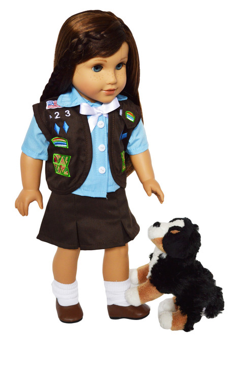 Bernese Mountain Puppy Dog For American Girl Dolls, Our Generation Dolls and My Life as Dolls.