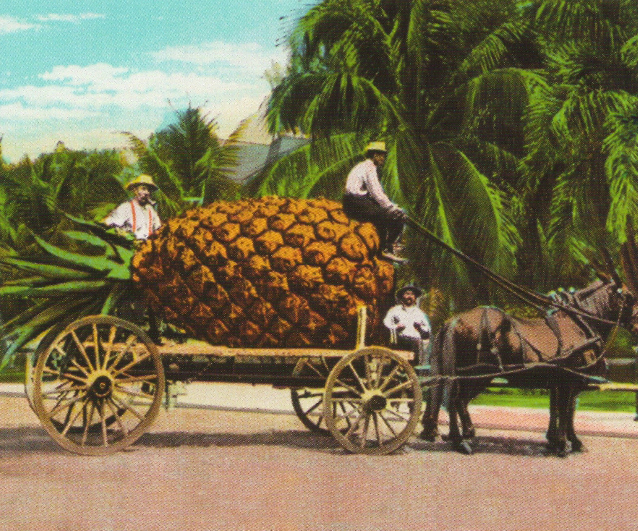Pineapple Fruit Cart and Trees   Wall Art Posters