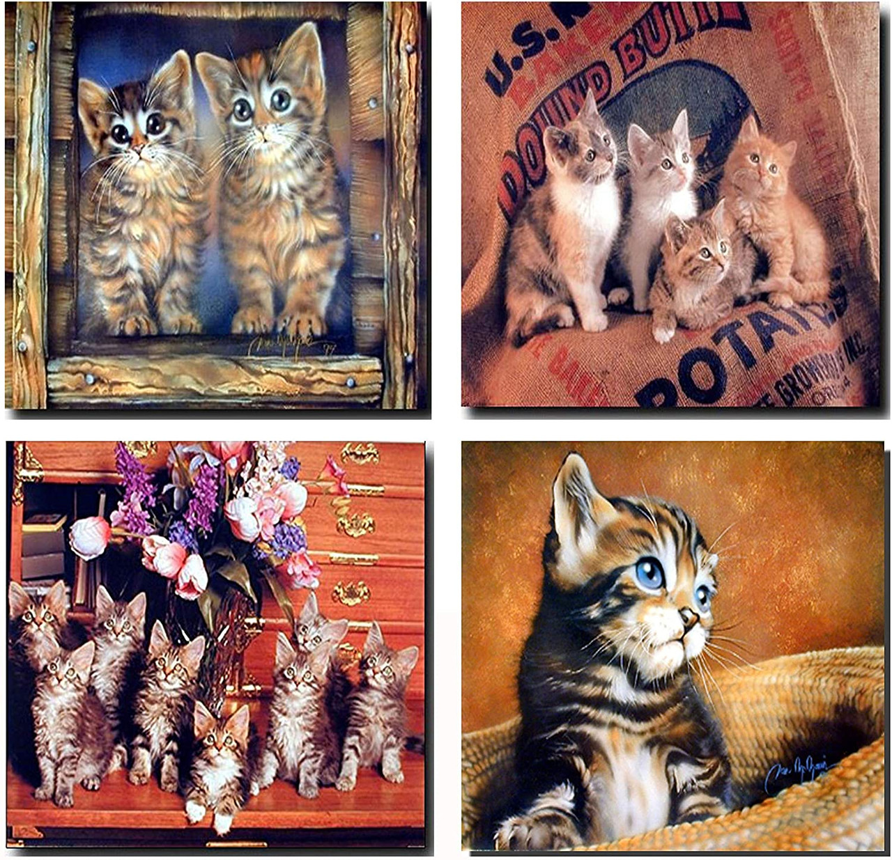 Cute Cats Wall Decor Kitten Animal Kids Room 16x20 Four Set Art Print Posters Impact Posters Gallery