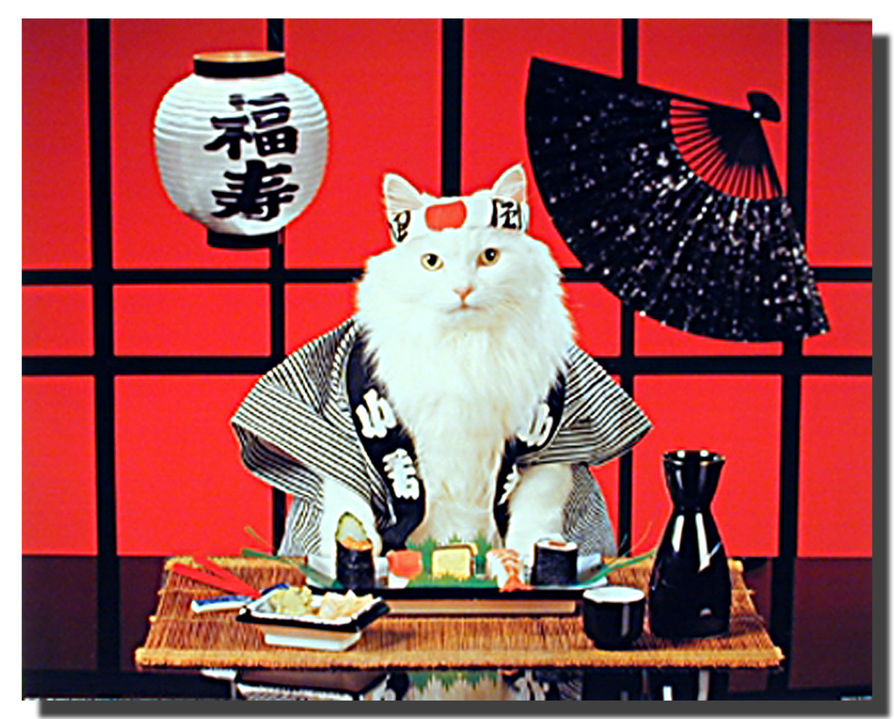 Christmas Gift - Sushi Cat