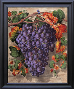 Black Grape Still Life Fruit Kitchen Wall Decor Barnwood Framed Art Print Poster 19x23 Impact Posters Gallery