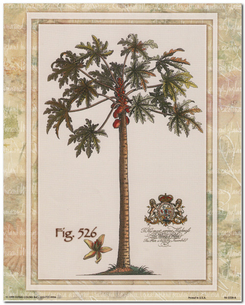 Tropical Palm Tree Vintage Fig 526 Contemporary Wall Decor Art Print Poster (16x20)