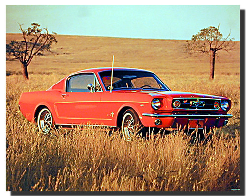 1965 Red Ford Mustang Car Posters