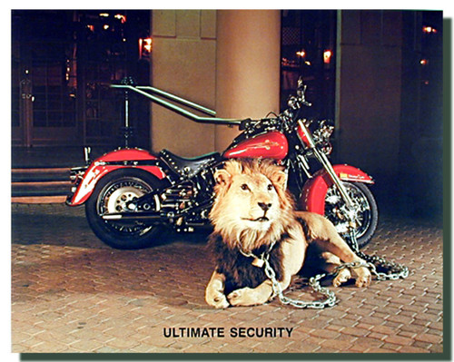 Ultimate Motorcycle Security Posters