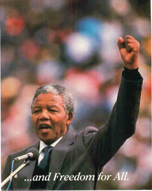 Nelson Mandela Inspirational Motivational Wall Decor Art Print Poster (16x20)