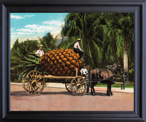 Pineapple Fruit Cart and Trees Wall Décor Black Framed Art Print Poster (19x23) …