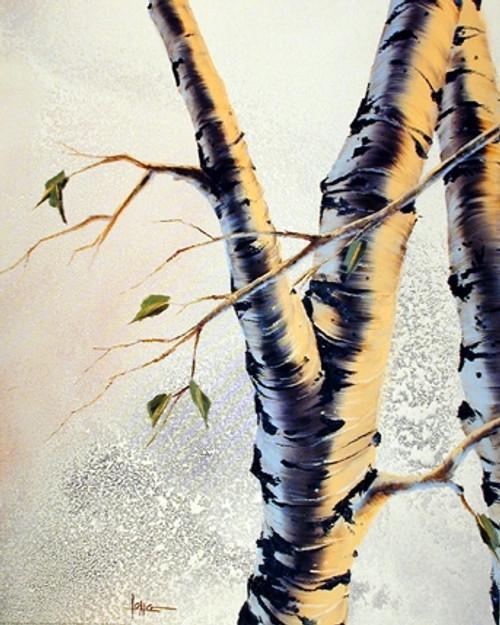 Forest Aspen Tree Scenery Nature Wall Decor Art Print Poster (16x20)