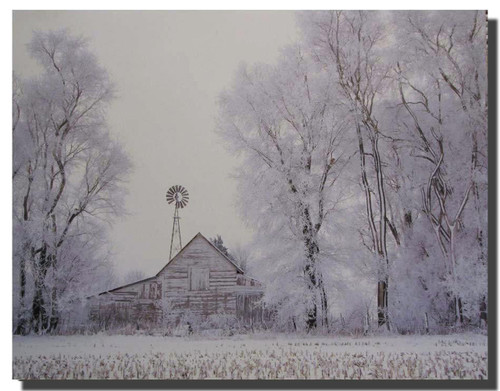Fog Rural Country Barn Winter Snow Tree Wall Decor Art Print Poster (16x20)