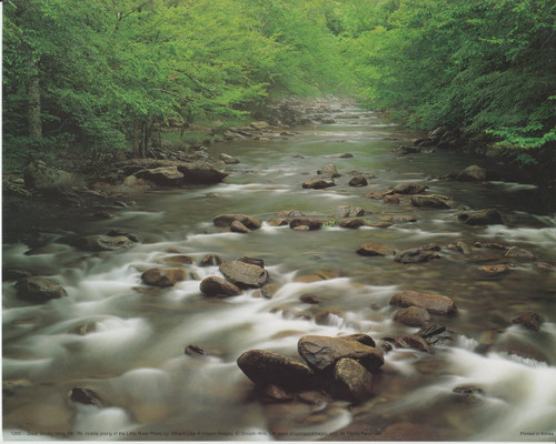Great Smoky Mountain Middle Prong of the Little River National Park Art Print Poster (16x20)