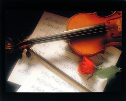 Violin & Musical Note Sheet Red Rose Flower Romantic Wall Decor Art Print Poster (16x20)