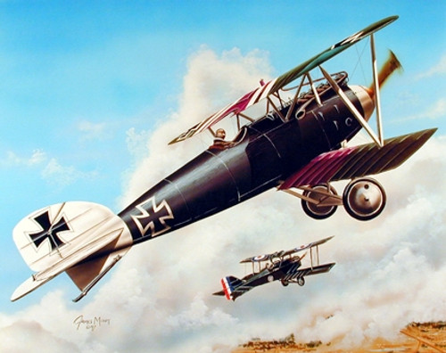 Military Biplane Albatross D.iii Airplane Aircraft Aviation Picture Wall Decor Art Print Poster (16x20)