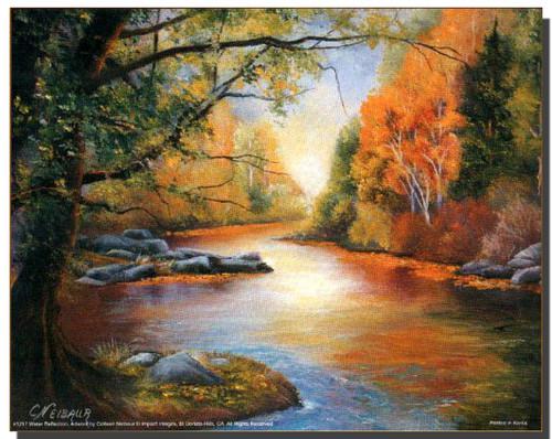 Creek Scenery Poster