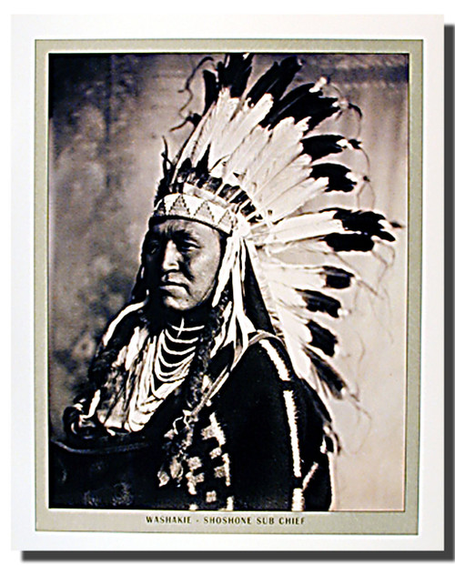 Shoshone Chief Washakie Posters