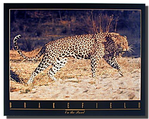 Snarling Leopard Poster