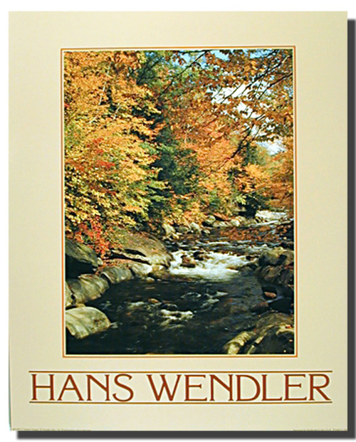 Fall Stream Poster