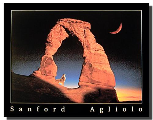 Delicate Arch Poster- Utah