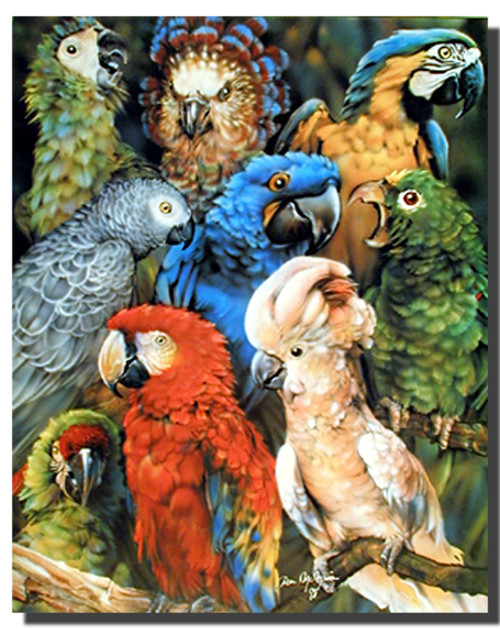 Parrot collage Posters