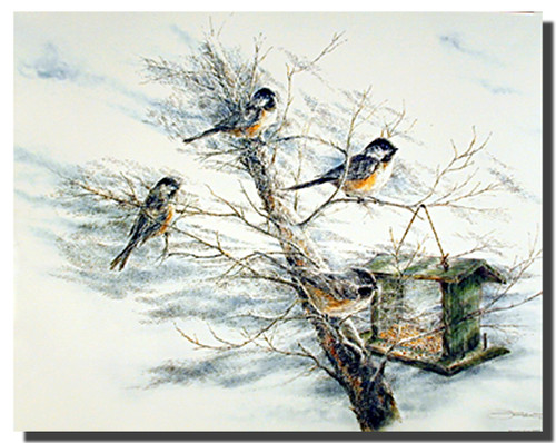 Chickadee Birds Posters