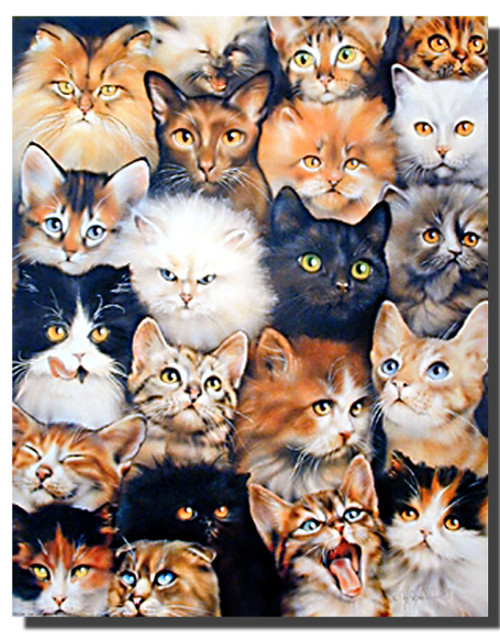 Cat Collage Print and Poster