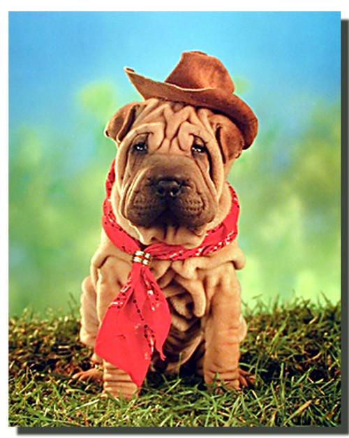 Shar pei Cowboy Poster