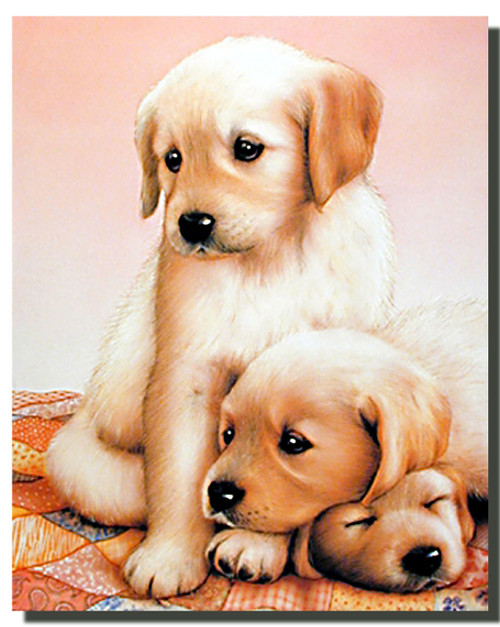 Three Puppies Poster