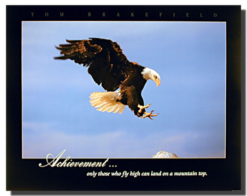 Bald Eagle Landing Posters