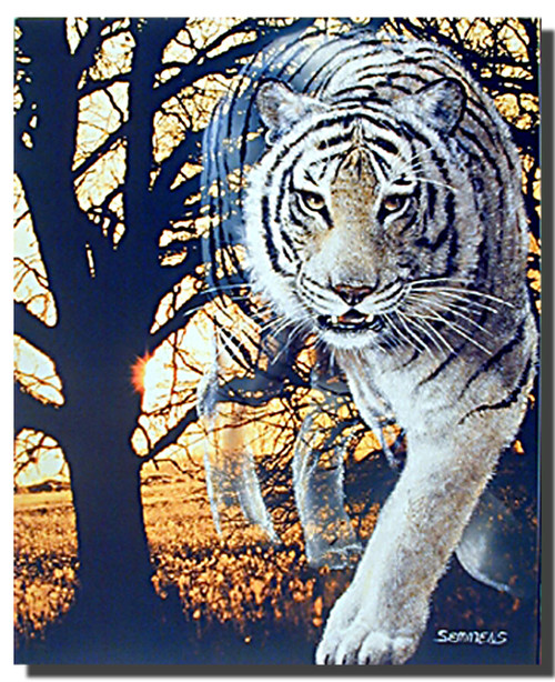 Spirit of the White Bengal Poster