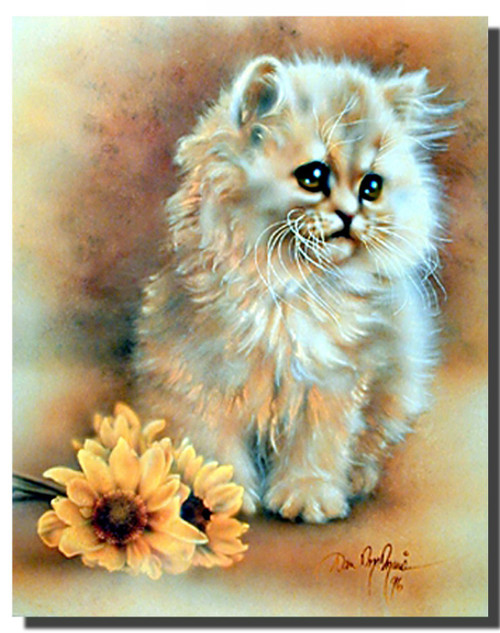Green Eyed Fluffy Cat Poster