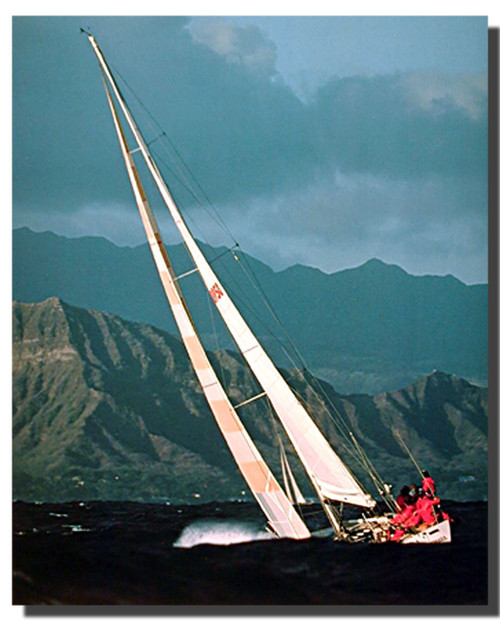 Sailboat Picture