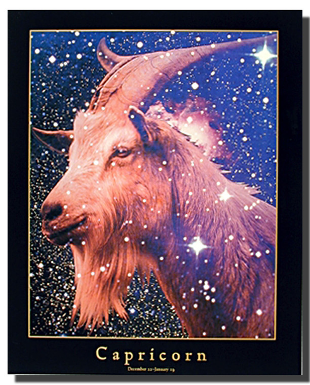 Capricorn Sign Poster