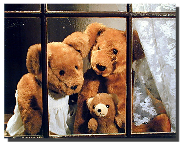 Teddy Bear Family Posters- Window