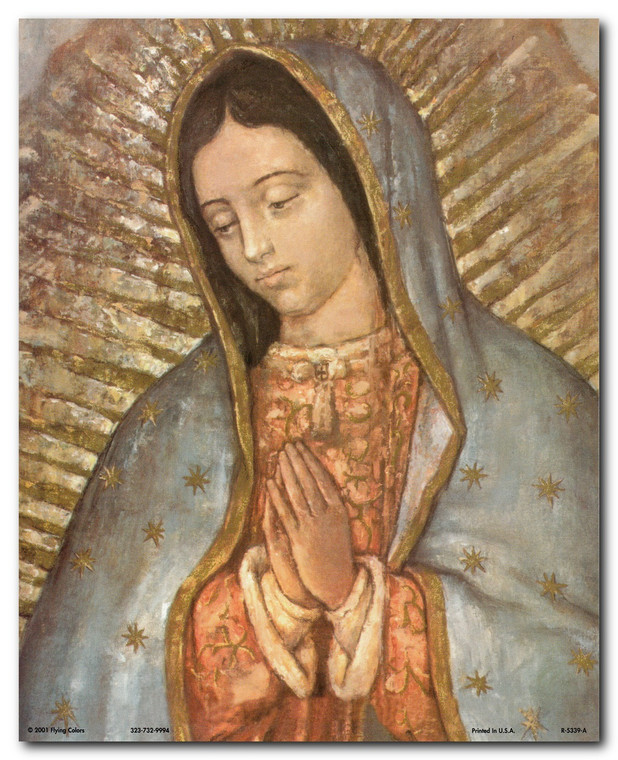 Our Lady Of Guadalupe Mexico Virgin Mary Religious Art Print Poster (16x20)